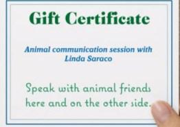 gift-card-inside
