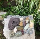 Suzannes Garden
