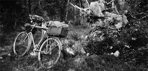 cykel_skog_520