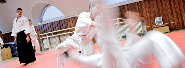 Aikido Vereinstraining Kyushindo Hannover