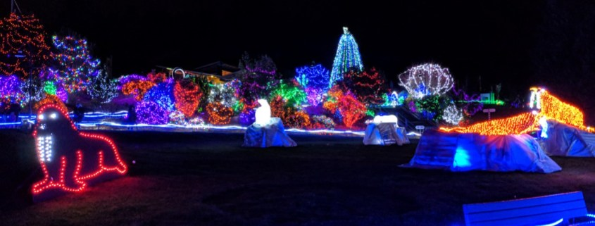 Zoolights Tacoma 2018 Point Defiance Copyright rnissenbaum.com
