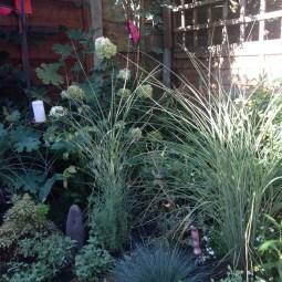 chorlton garden design 1g