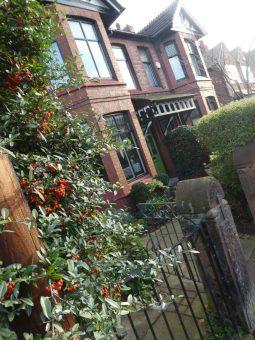 chorlton garden design 2b