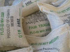 Maya Vinic Coffee, bagged for export