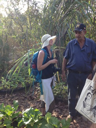 Conversation with Director of permaculture foundation