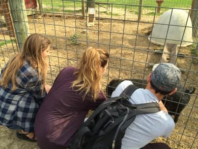 At Milburn Orchards