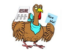 career center turkey
