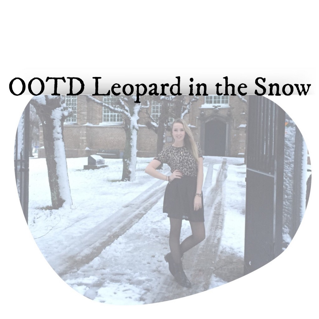 OOTD Leopard in the Snow