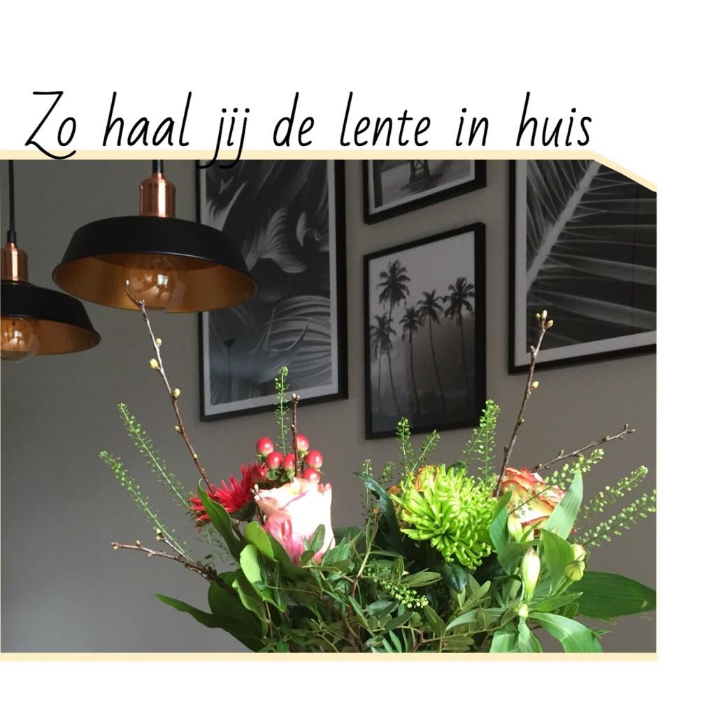 https://lindseybeljaars.nl/2018/02/zo-haal-jij-de-lente-in-huis/
