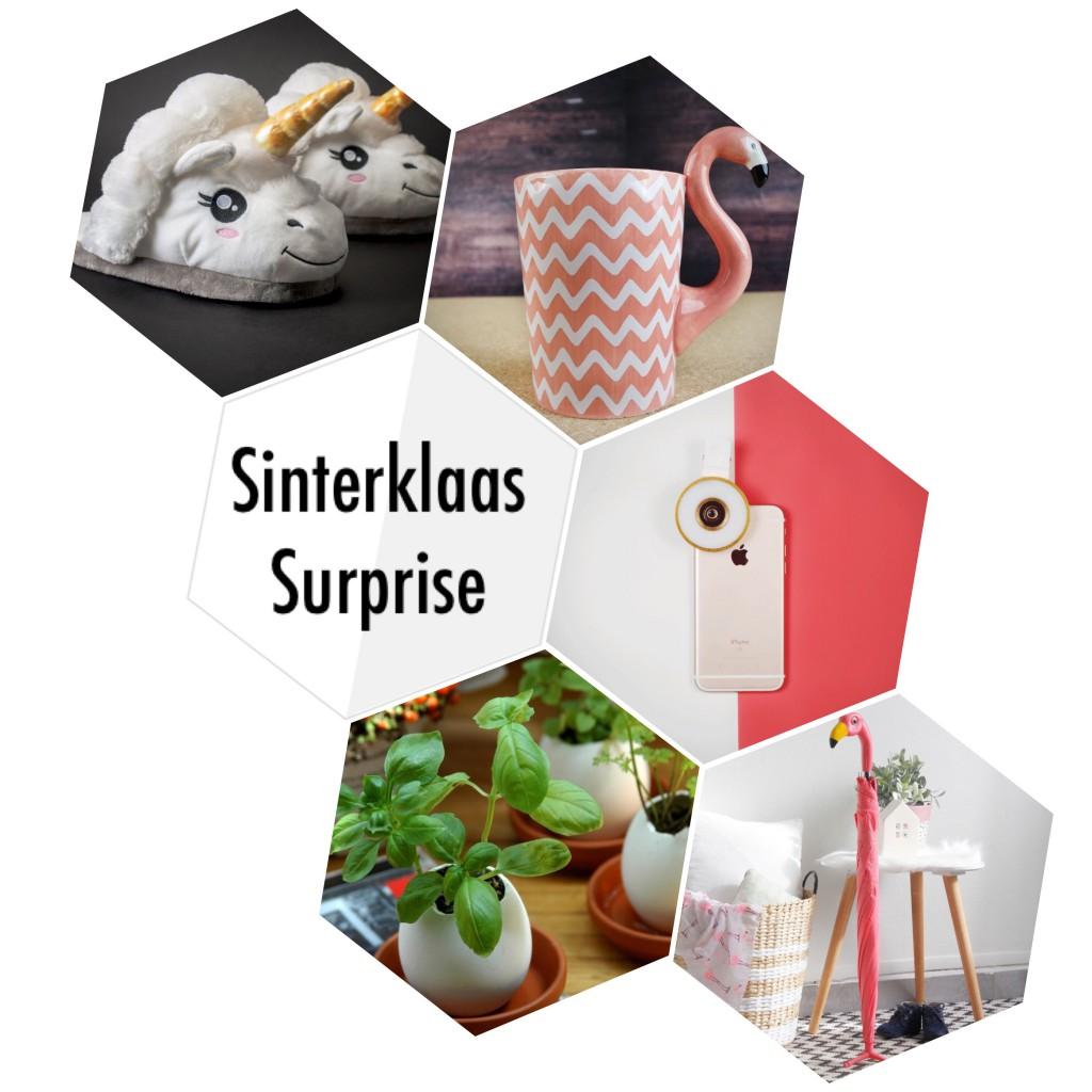 Cadeautips Voor Een Sinterklaas Surprise Lindsey Beljaars