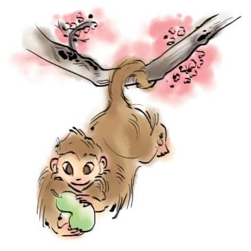 zodiacbookmark_monkey_600x600