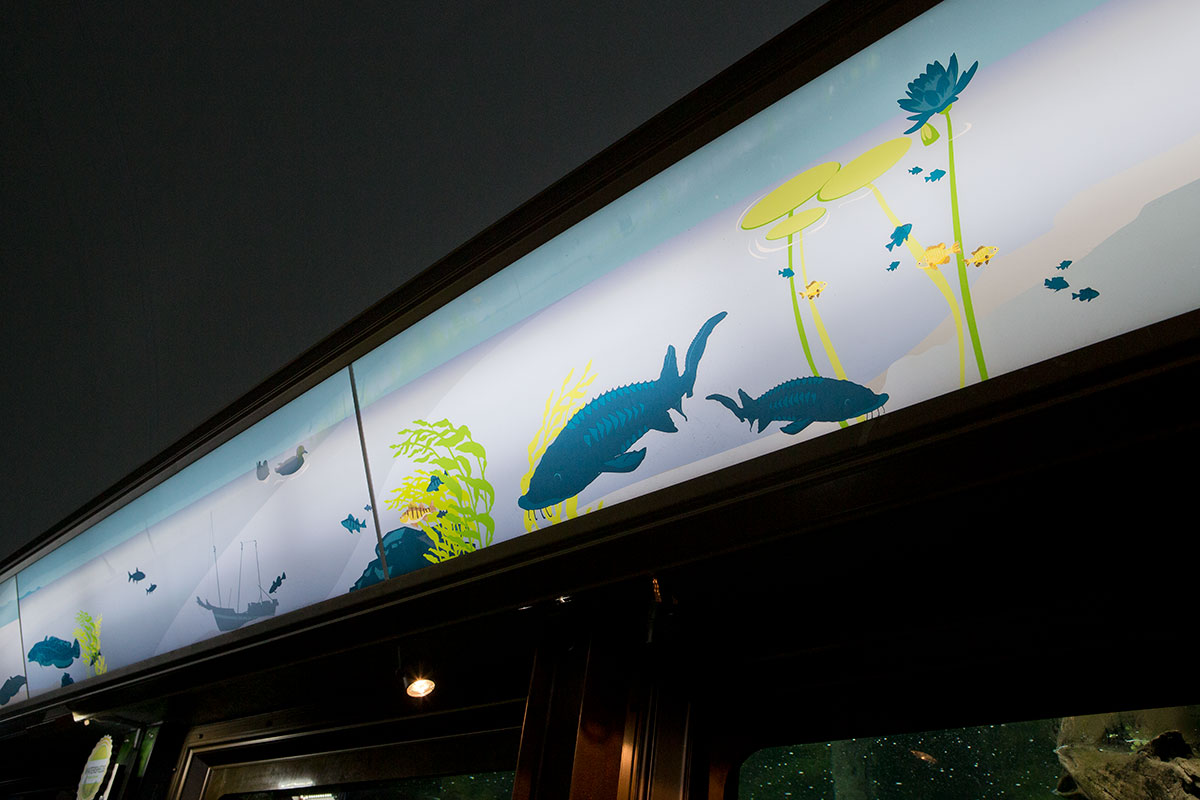 The middle of the header is shown above Shedd's sturgeon habitat, featuring silhouettes of sturgeon among local plantlife.