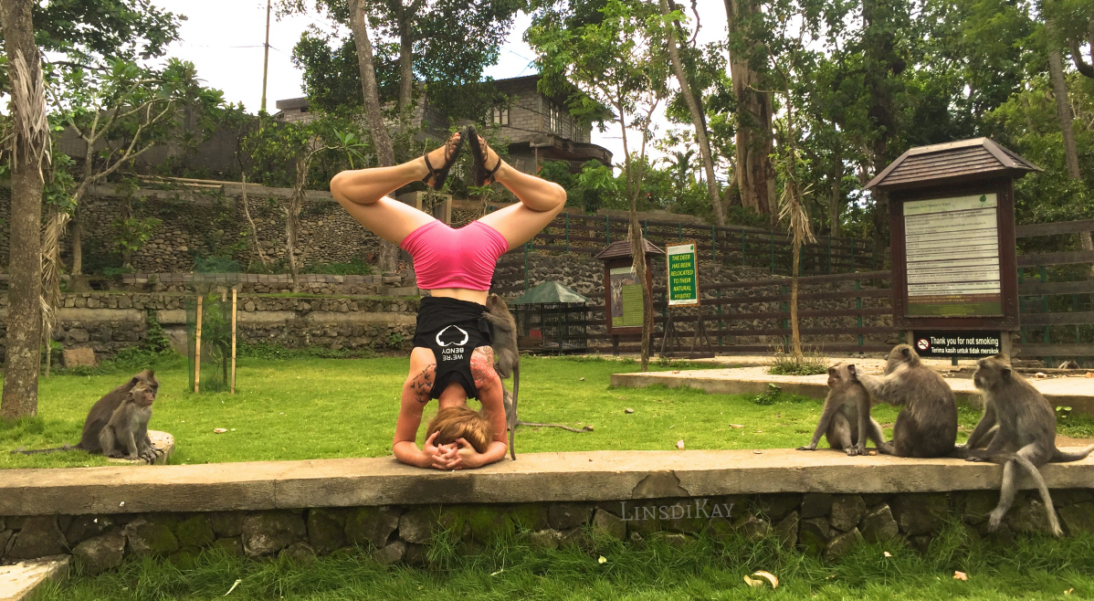 benefits of headstand how to do a headstand masters lindsikay bali travel what i learned what i loved what i avoided indonesia monkey forest ubud