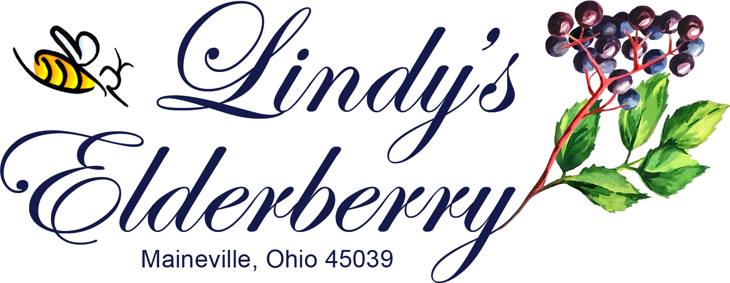 Lindy's Elderberry