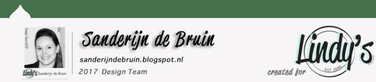 sanderijn-de-bruin-lsg-dt-blog-post-footer-2017