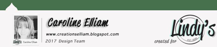 caroline-elliam-lsg-dt-blog-post-footer-2017