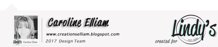 Caroline Elliam LSG DT Blog Post Footer 2017