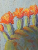 Close up Cactus  ( Pastel)  23 x 31 cm $80