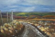 Scottish Moors - acrylic on canvas painitng