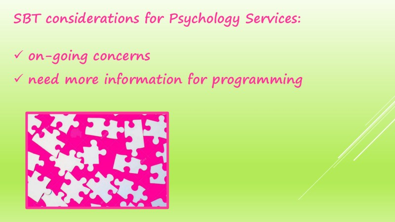 The Process of Psychology Assessments in schools 11