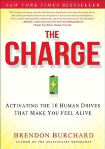 The Charge: Activating The 10 Human Drives That Make You Feel Alive Ebook