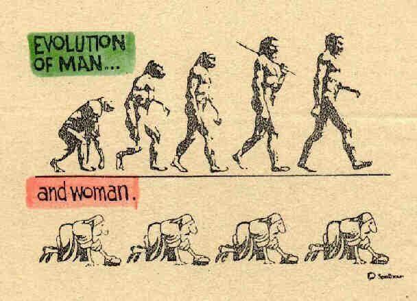Η εξέλιξη του ανθρώπου18