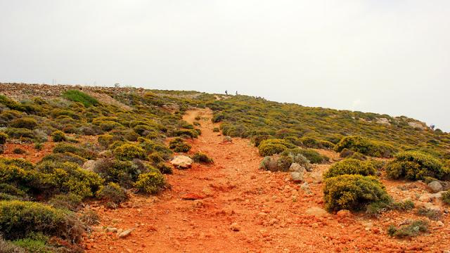 Comino's walking trails