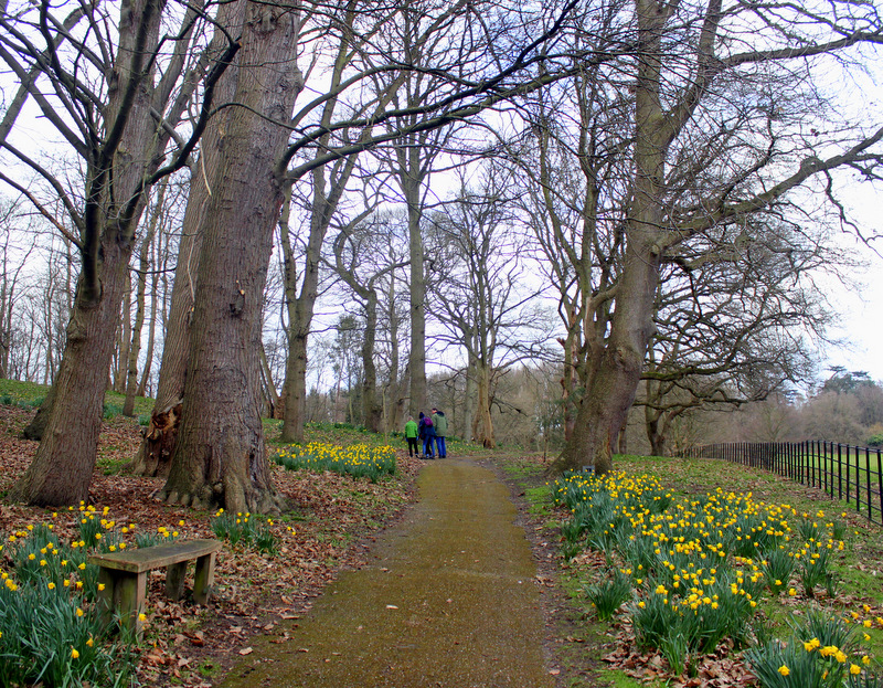 Historic route at Painshill Park