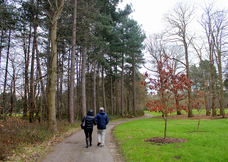 Walking in Painshill Park