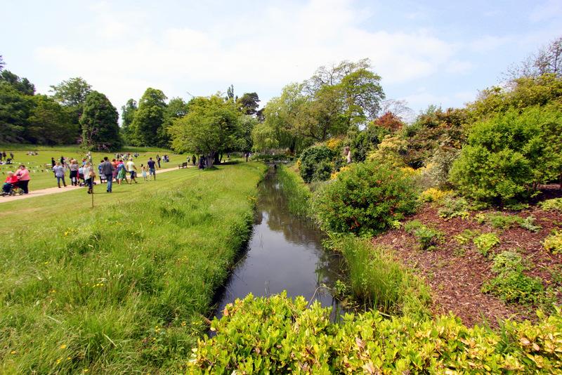 Hever-Castle-Stream-Plants