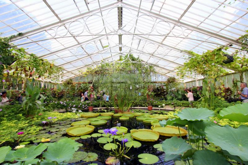 Lilypad greenhouse, Kew Gardens