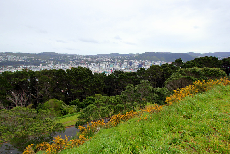View from Mt Victoria, Wellington