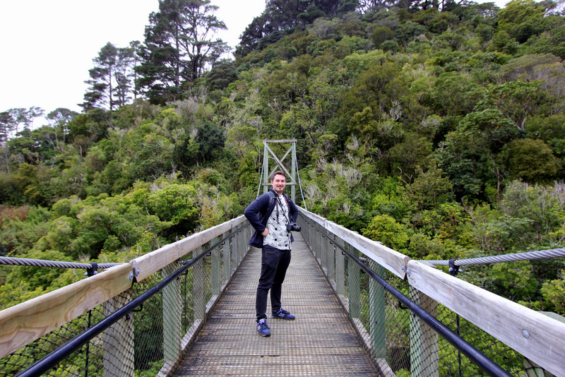 Suspension bridge at Zealandia, Wellington