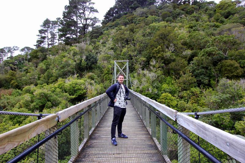 Suspension bridge at Zealandia, Wellington