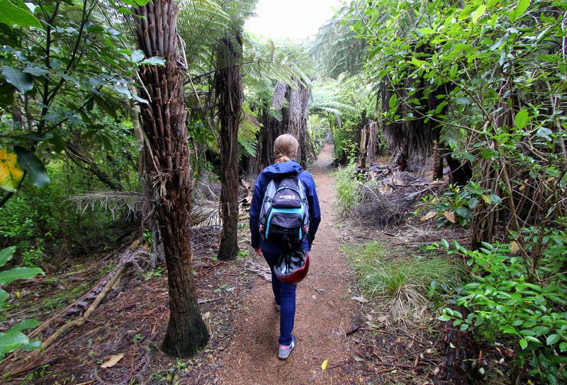 Whakanewha Regional Park