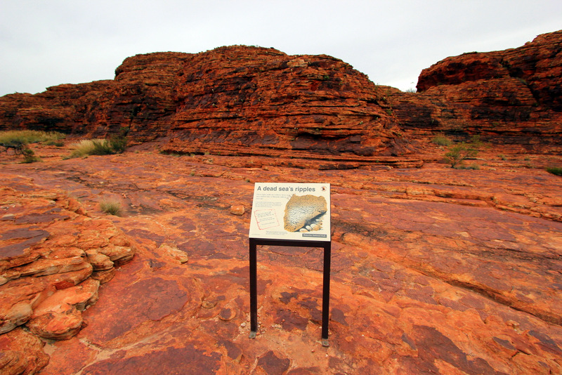 Ancient seabed at Kings Canyon