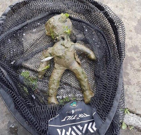 Random catches fishing alien