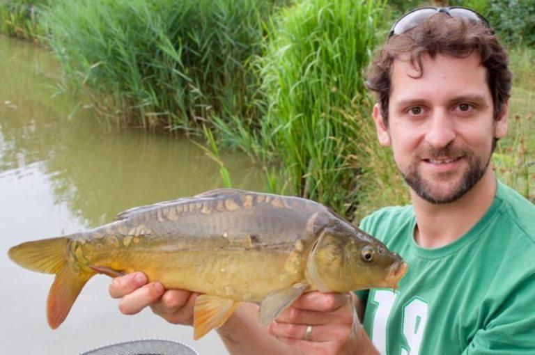 carp match fishing Devon