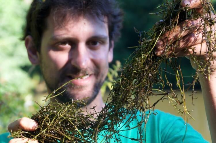 weed rake how to fish in weedy swim