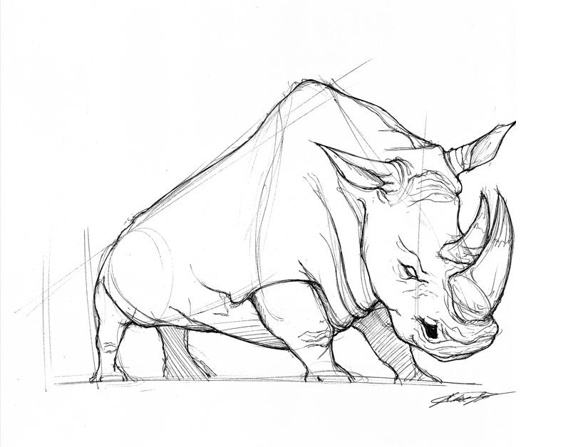 dan-25-min-rhino2