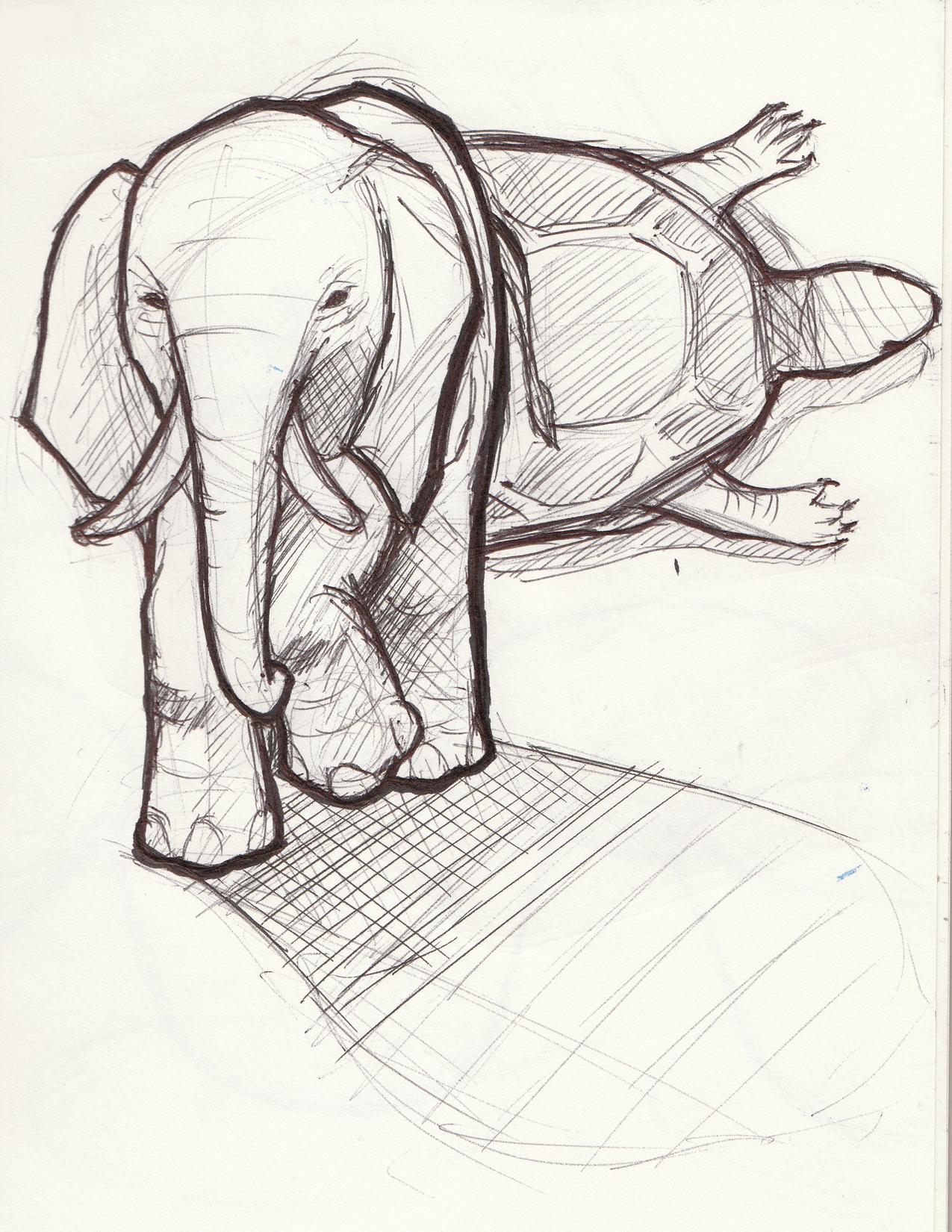 turtelephant