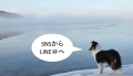 SNSからLINE公式アカウント(ラインアット)へ集客!友だち数を増やす3つの方法