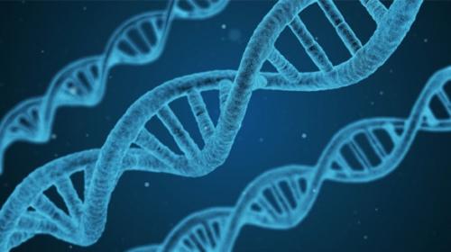 identite-peuple-genetique-588x330.jpg