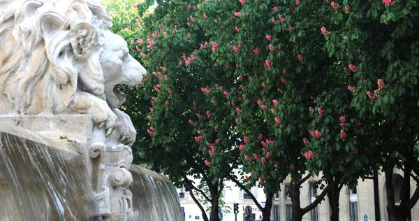 place-saint-sulpice