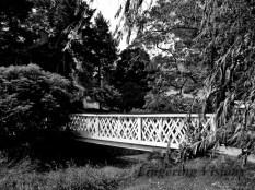 BnW Bridges(w)#(7)