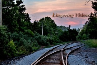 Curves of a train track(w)# (8)