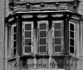 bNw Windows(w)# (11)