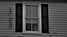 bNw Windows(w)# (12)
