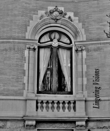bNw Windows(w)# (5)