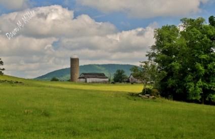 Barns in the Sky(w)# (3)
